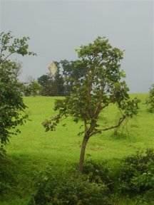 Subhadra Tranquil